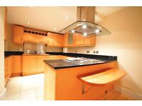 Stunning 2 double bedroom flat in Canary Wharf