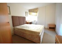Fantastic 2 bedroom flat with Gym, Pool and Jacuzzi in Canary Wharf