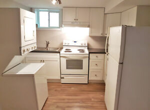 Gorgeous Newly Renovated Bachelor Apartment - 74 John St. Lower