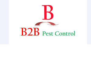 B2B Pest Control $79*free  6 months* warranty* Wiley Park Canterbury Area Preview