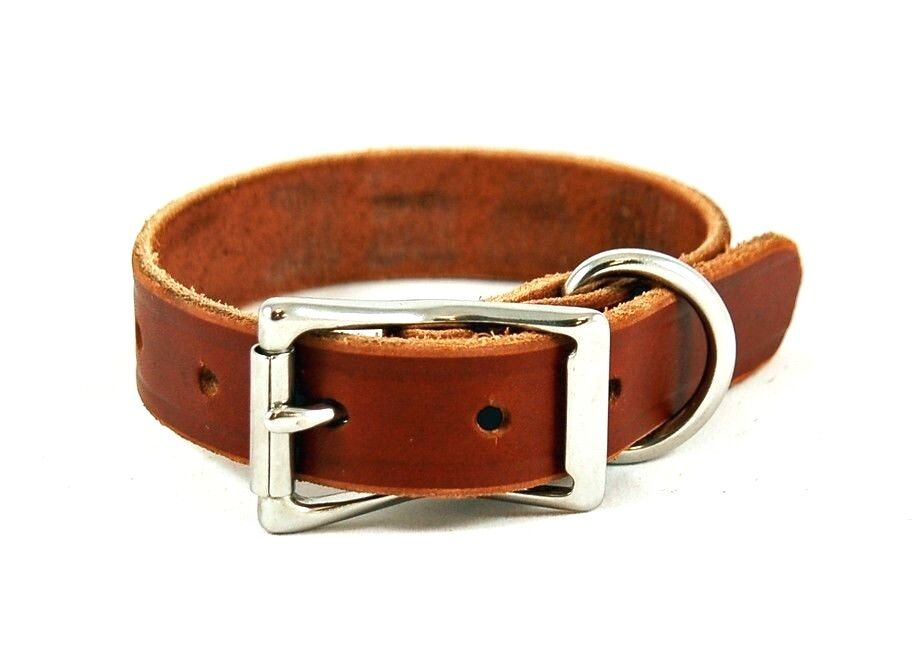 CLASSIC LEATHER DOG COLLAR BROWN BRASS STEEL HANDMADE BY AMI