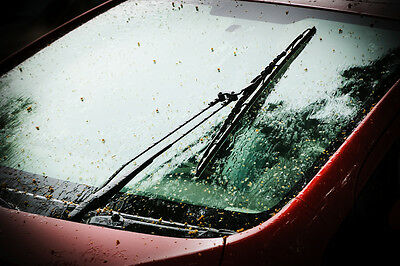 Your wipers will have been through a lot of work in the winter