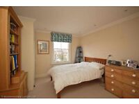 comfortable and hygienic rooms to rent