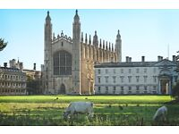 Window cleaning window cleaner services gutter clearing Cambridge