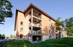 FREE RENT - Affordable Suites Close to the River Valley!