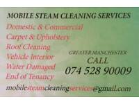 Carpet Upholstery Cleaning Serwices