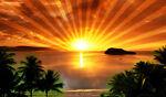 sunrise_auctions