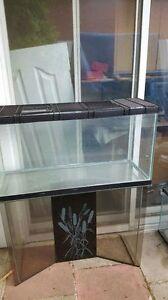 aquariums ou terranium  36 pouces avec pied en verre