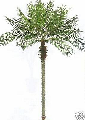 8' Artificial Phoenix Palm Tree Plant Bush Silk Pool Patio Deck Date Sago Bamboo - Artificial Palms