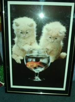 Kittens & Goldfish Picture -Large - Framed with glass. Wembley Cambridge Area Preview