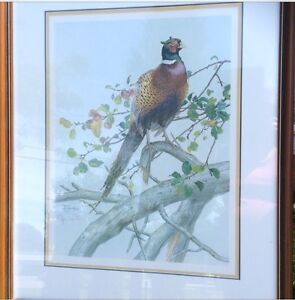 Pheasant by Glenn Loats , signed and numbered print