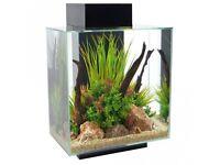 Weekend Price!!! Fluval Edge 46 Litre Aquarium/Fish Tank + extras - Black