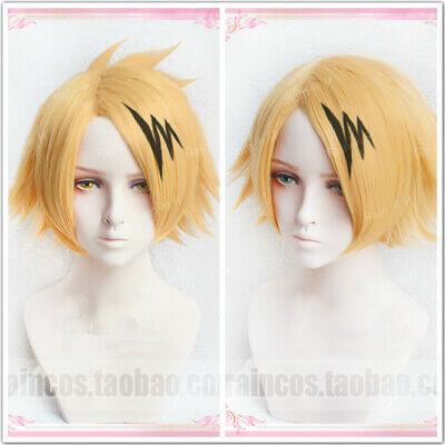 My Boku no Hero Academia Kaminari Denki Wigs Cosplay Wig + Hair Clip Costume (Hair Clip Wigs)