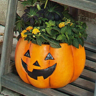 Pflanzer Kürbis, Halloween, Blumenschale, Blumentopf, Pumpkin