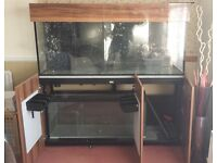5ft Marine Fish Tank With Steel Stand & Large Sump