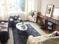 1 large double loft room in house share