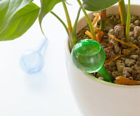 House/garden Water Houseplant Plant Pot Bulb Automatic Self Watering Device Cn - unbranded - ebay.co.uk