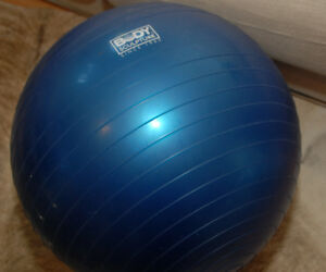 Body Sculpture workout ball