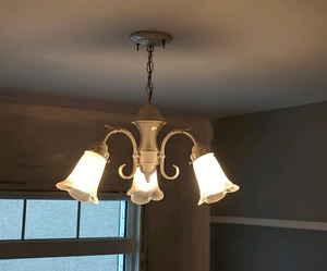 Chandelier Ceiling Light - Great Condition