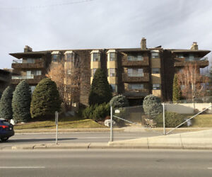 2 Bedroom Newly Renovated Condo for Sale