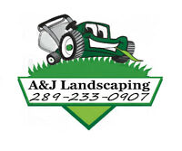Landscaping services, Sod, Grass Replacement& Cutting & MORE