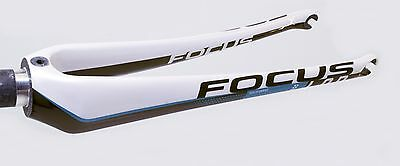 Focus IZALCO,Carbon,Rennrad Gabel,Tapered, 700C L.O.D.,NEU 6th Element