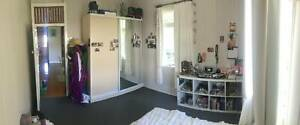 Room available in a great share house in Red Hill $200/pw