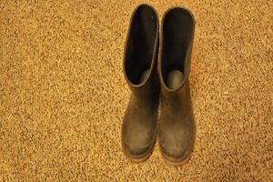 Kids Rubber Boots Size 3 Excellent Condition!! Spring is coming! Cambridge Kitchener Area image 3