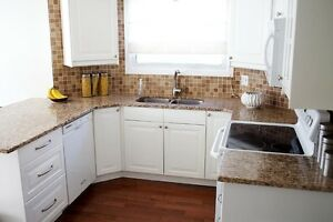 RGS Granite - Luxury You Can Afford London Ontario image 4