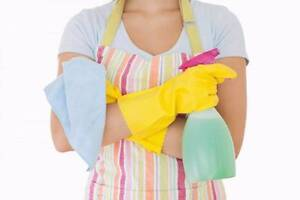Casual Cleaner $18/Hr! Broadview Port Adelaide Area Preview