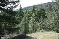 Okanagan Lot For Sale.