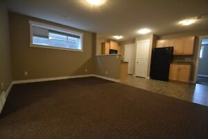 2013 Built 2 Bedroom Basement Suite For Rent