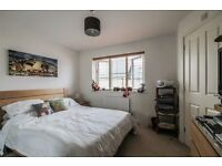 Amazing 1 bedroom flat available in finchley road