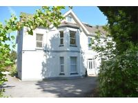 NEWLY REFURBISHED VERY SPACIOUS UNFURNISHED 1 BEDROOM FIRST FLOOR FLAT IN MEYRICK PARK WITH PAKING