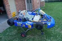 Go Kart KT100S Hamilton South Newcastle Area Preview