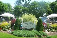 Vacation in Beautiful Port Dover
