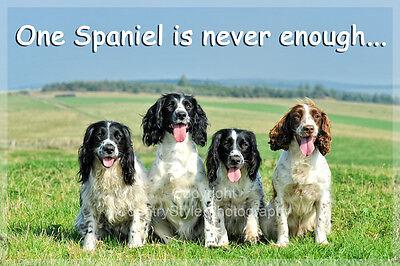 Springer Sprocker Spaniel Dog Funny Fridge Magnet birthday gamekeeper gift