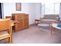LOVELY ONE BEDROOM FLAT IN ST. PAUL'S AVENUE-5 MIN FROM TUBE....AMAZING PRICE! CENTRAL LOCATION!!