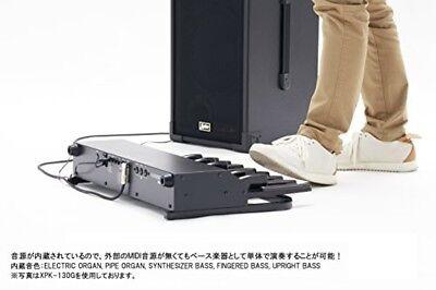 как выглядит HAMMOND Hammond MIDI pedal board XPK-200GL фото