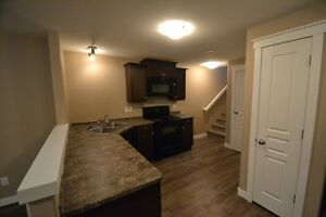 2014 Built 2 Bedroom Basement Suite For Rent