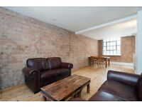Upscale and Urban 1 Bedroom Apartment