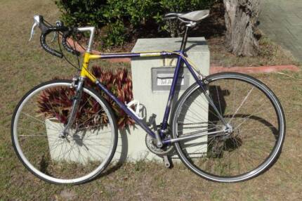 Vintage PUCH Bike, Campagnolo Cross Drilled Dropouts, Reynolds