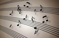 Piano / Music Theory Teacher