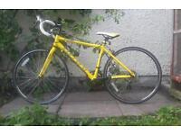 Road Bike Carrera Jnr
