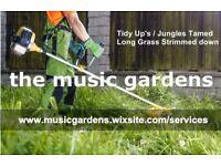 Long Grass Strimmed Down/Garden Tidy Up's