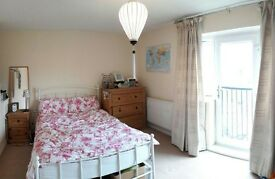 Lovely double room - Orchard Park!