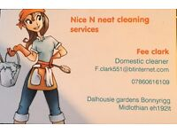 NICE N NEAT CLEANING SERVICES