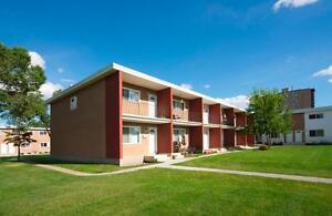 RENT A 3 BEDROOM FOR THE PRICE OF 2 - Family Townhome Close... Edmonton Edmonton Area image 10