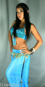 Princess-Jasmine-Harem-Belly-Dance-Costume-Bra-Sexy-Halloween-Beaded ...