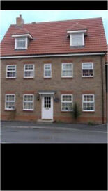 En-Suite Room to Rent in House Share